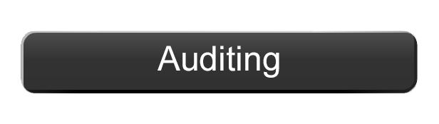 Our Services Auditing
